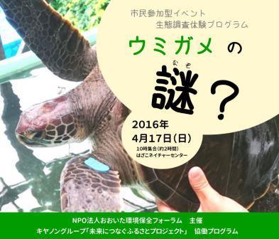 【募集】生態調査体験プログラム「ウミガメの謎?」【2016年4月17日(日)】