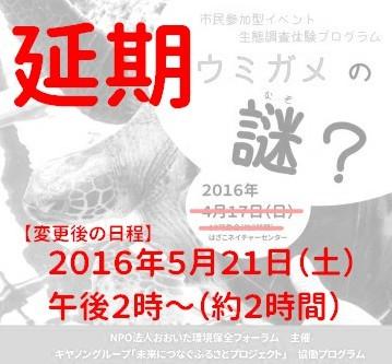 【延期】 生態調査体験プログラム「ウミガメの謎?」