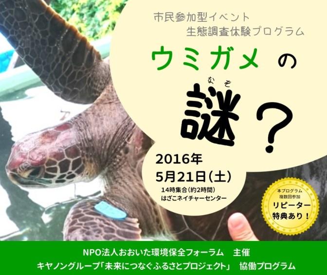 5月21日の「ウミガメの謎?」イベントの様子