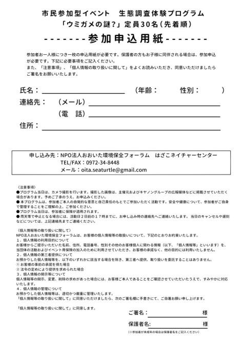 ウミガメ5月 参加申込用紙small