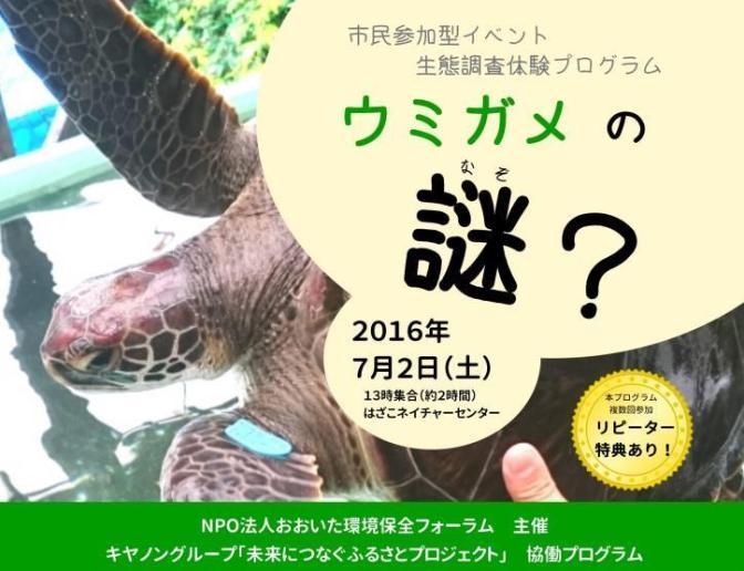 生態調査体験プログラム「ウミガメの謎?」