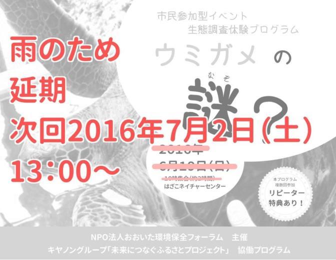 【延期】生態調査体験プログラム「ウミガメの謎?」
