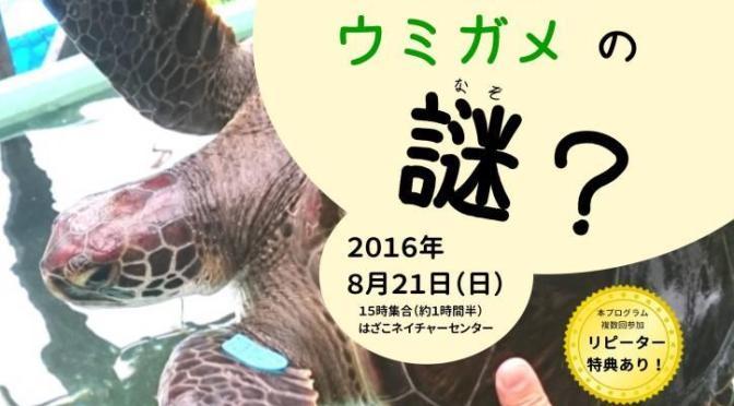 8月21日(日)15:00~生態調査体験プログラム「ウミガメの謎?」
