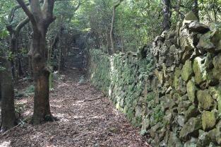 コースに沿って続く石垣はシシ垣と言い、猪や鹿から農作物を守るために作られました