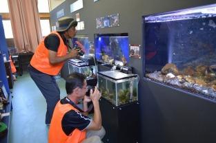 ミュージアムのお魚撮影