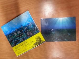「屋久島 豊饒の海 The Sea of Fertility,Yakushima」とポストカード