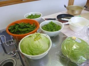 臼杵のほんまもん野菜
