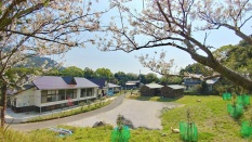 桜のフレームから臨む渚の交番とはざこネイチャーセンター