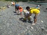 ウミガメも人も安心して暮らせる場所を作るため、海岸のゴミ拾い