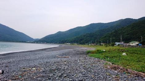 高山海岸 浜の端の方は石ころだらけで産卵にはむかない