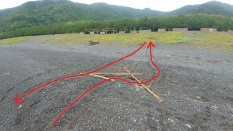 流木を避けて上陸したアカウミガメの足跡