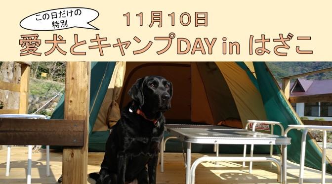 11月10日は「愛犬とキャンプDAY in はざこ」