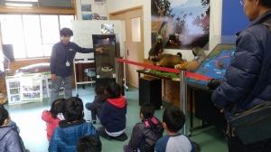 ウミガメの産卵巣の説明