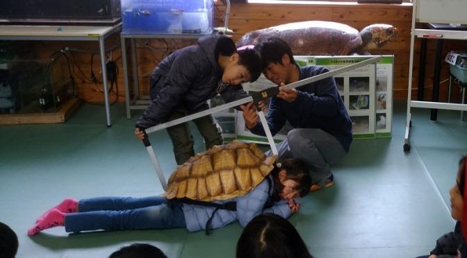 カメになって学ぶ体験型環境教育