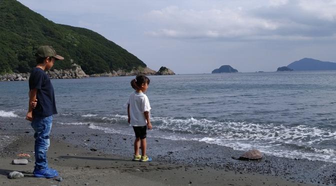 海の日特別ウミガメ体験プログラム