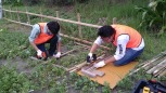釘を打つために竹材に穴開け作業