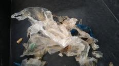ビニール袋の数々