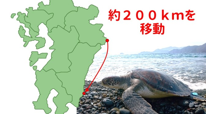 宮崎県で再発見